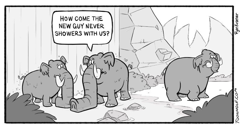 Elephant jokes - photo#23